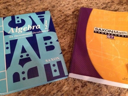 Need more arithmetic review before Algebra 1? Then do Saxon Math 8/7. Fluent in arithmetic and ready for more algebra-type concepts? Then do Saxon Algebra 1/2.