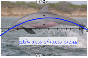 Mathematics has so many uses, including modeling the beautiful arcing leap of a bottlenosed dolphin! Image ©2009 by David E. Shormann.